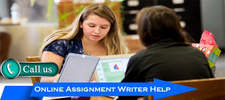 online assignment writer help